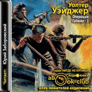 Ueydzher_U_Operatsiya_Gadyuka-3_Zaborovskiy_YU
